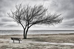 Lake Hefner Bench